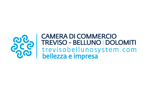 Immagine 2016 – 2018 New corporate identity and website of the Treviso-Belluno Chamber of Commerce