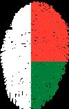 """Immagine Webinar """"Madagascar: Opportunità commerciali e di investimento per le PMI venete"""""""